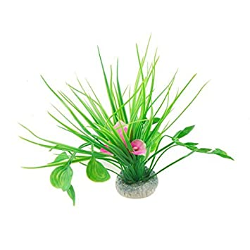 Amazon.com : eDealMax Flor Hoja Fish Tank planta de la hierba de la decoración, Blanco/rosa / Verde : Pet Supplies