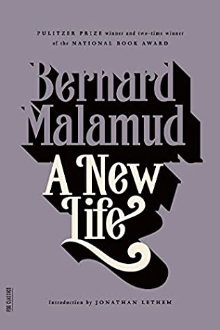 book cover of A New Life