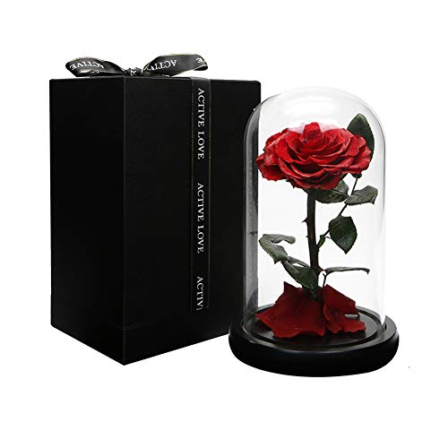 Beauty and The Beast Rose.Dear her Handmade Preserved Flowers,Forever Rose in a Glass Gift Box,Family Party, Wedding, Anniversary,White Day Best Gift for Her ()