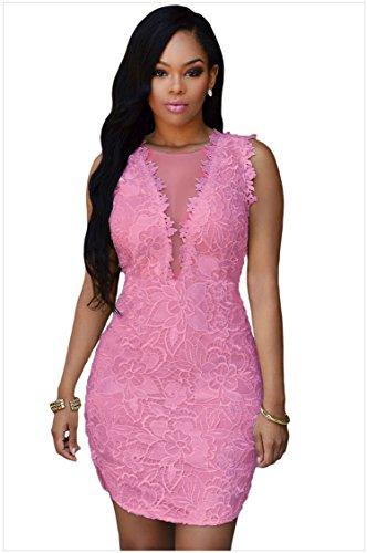 E-Love Womens Hot Sale Pink Lace Nude Mesh Accent Dress(L)