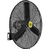Outdoor Oscillating Wall Mounted Fan, 30 Diameter, 3/10hp, 8400cfm