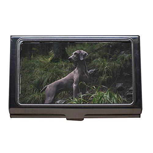 Porta Inossidabile Custodia Puppy Biglietti Visita Da Di Sleep Canine Dog Pet Id Per Credito Case23 Acciaio Adorable Animal Carte Cute Portafoglio xqHrqXFa