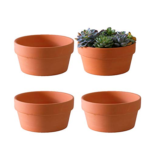 Yishang Terracotta Shallow Planters for Succulent – 7 Inch Cactus Plant Containers Indoor Garden Bonsai Pots with…