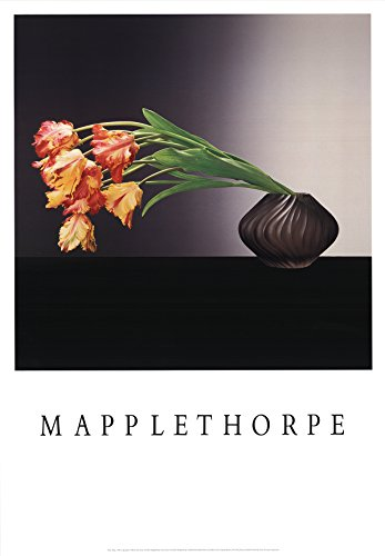 Robert Mapplethorpe-Parrot Tulips-1988 Poster - Robert Tulips