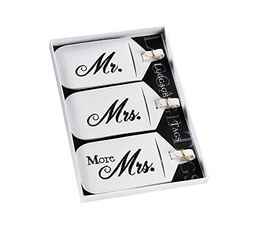 Lillian Rose 3-pc. Mr. & Mrs. Luggage Tag Set