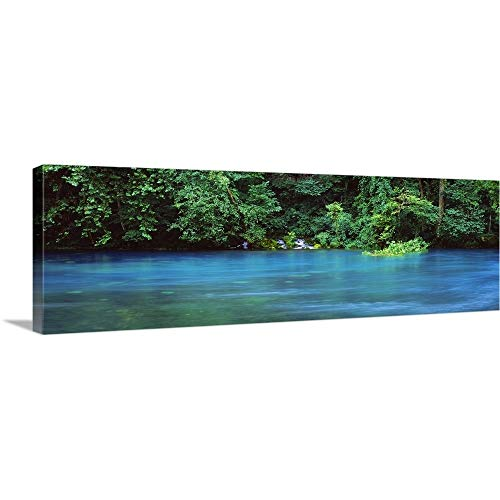 GREATBIGCANVAS Gallery-Wrapped Canvas Entitled Forest at The Riverside, Big Spring, Ozark National Scenic Riverways, Missouri by ()