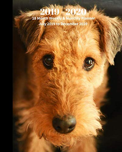 - 2019 - 2020 | 18 Month Weekly & Monthly Planner July 2019 to December 2020: Airedale Terrier Dog Breed Pets Animal Vol 64 Monthly Calendar with ... Holidays- Calendar in Review/Notes 8 x 10 in.