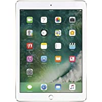 Apple iPad Air 2 A1566 Gold 32GB WiFi only (Renewed)