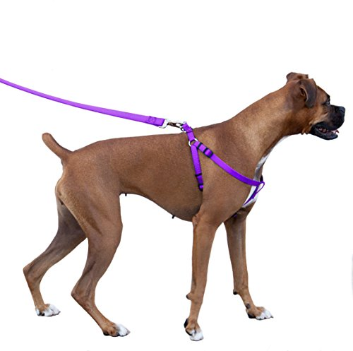 Majestic Pet Harness Best Small Adjustable HARNESS 25x40 product image