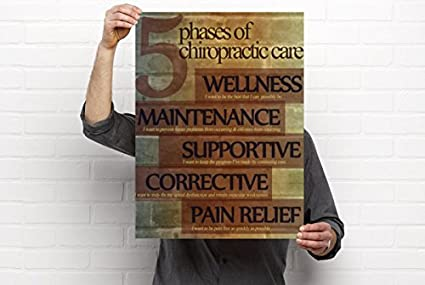 Amazon.com: Clinic Artwork 5 Phases of Care - Chiropractic Anatomy ...
