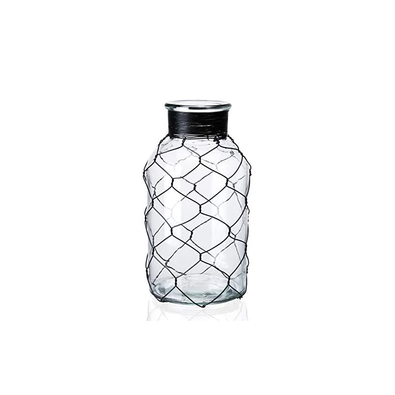 "Diamond Star Decorative Glass Vase Chicken Wire Wrap Flower Vase for Home Decor (4"" X 8"")"