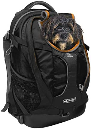Kurgo Dog Carrier Backpack for Small Pets - Dogs & Cats TSA Airline Approved Cat Hiking or Travel Waterproof Bottom G-Train K9 Ruck Sack Red Black
