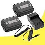 TWO NPFW50 Lithium Ion Replacement Batteries with Charger for Sony NEX-5N NEX-7 NEX-C3 Alpha Digital SLR Cameras DavisMAX Accessory Bundle, Best Gadgets