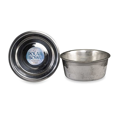 NEATER PET BRANDS Polar Bowl Freezable Water Bowl for Pets - Keep Water Cold for Hours (Medium)