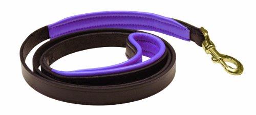 - Perri's Padded Leather Dog Leash, Havana/Purple, 5-Feet