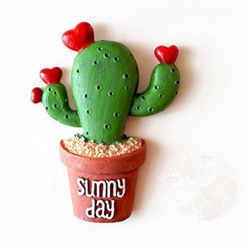 WINOMO Frigorifero Magnete Frigo Cactus Succulente Frigorifero Magnete Adesivo per Casa Decorazione