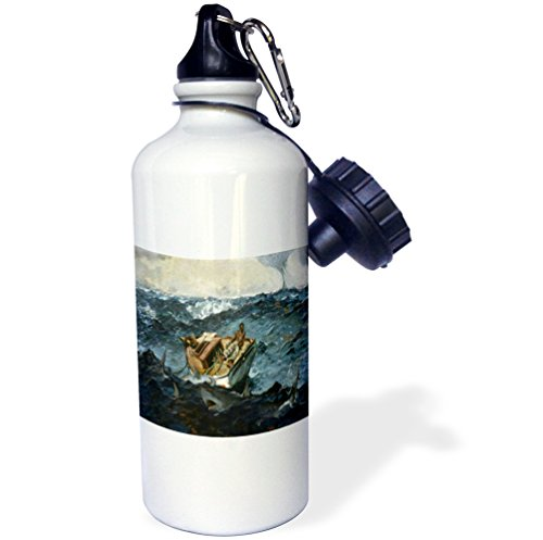 3dRose Print of Vintage Winslow Homer Painting The Gulf Stream-Sports Water Bottle, 21oz (wb_196343_1), 21 oz, Multicolor