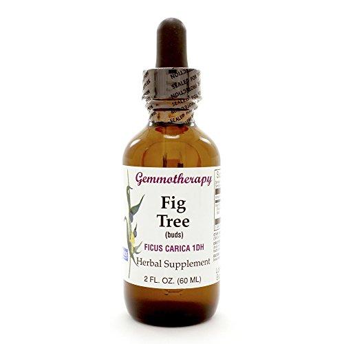 Gemmotherapy Fig Tree Buds Boiron 2 oz Liquid