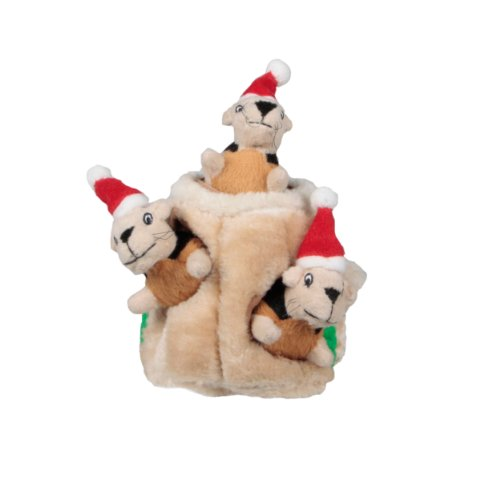 Outward Hound Kyjen  2576 Hide-A-Squirrel Holiday Version Interactive Squeaking Dog Toys, Small, Brown Review