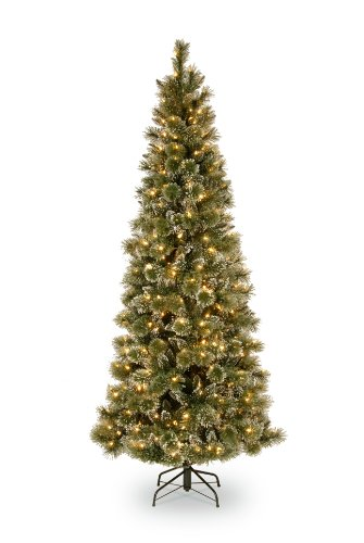 national tree 75 foot glittery bristle pine slim tree with 600 soft white led lights gb3 319 75 - Amazon Christmas Trees