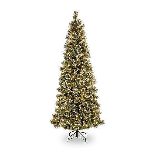 Amazon Christmas Trees