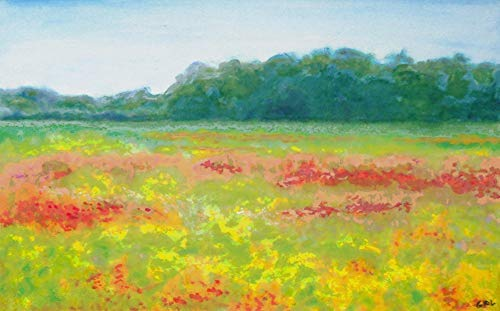 North Carolina Wildflowers Original Multimedia Painting