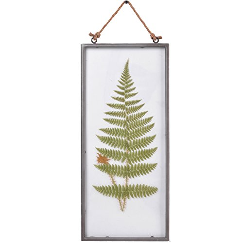 NIKKY HOME Vintage Framed Wall Glass Fern Botanical Wall Art with Rope 8