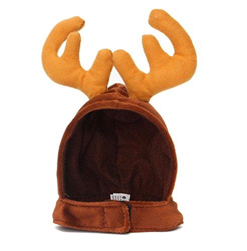 Reind (Sven Reindeer Costume)