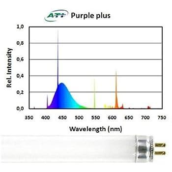 41PyjyvW0yL._SL500_AC_SS350_ amazon com ati 39 watt purple plus t5 ho lamp aquarium lights