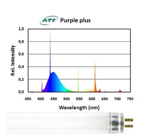ATI 54 watt Purple Plus T5 HO Lamp 460 Nm Actinic Lamp