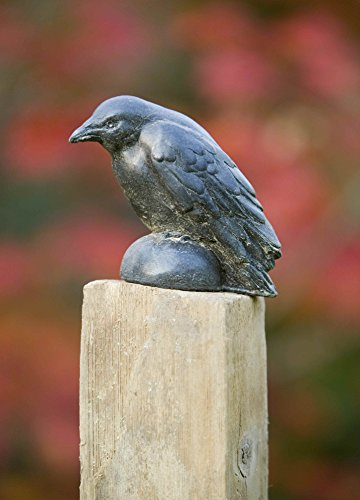 Campania International A-357-TN Raven Statue, Small, Terra Nera Finish (Campania Cast Stone Statue)
