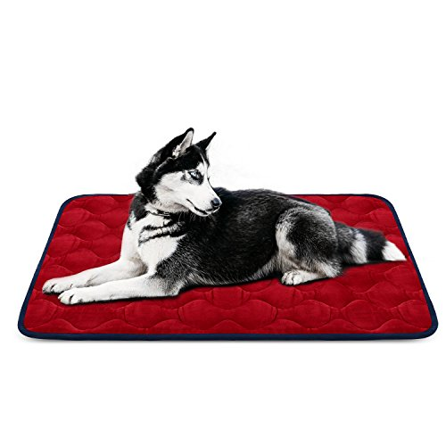 Dog Bed Mat Crate Kennel Pad Car Seat Cover Bed Pet Claw Resistant Anti-slip Cushion, Soft Fleece Washable Padded Bolster Bed for Travel House Floor, 42 IN Large Bed Red By HeroDog