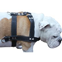 "Black Genuine Leather Dog Harness, Large to XLarge. 33""-37"" Chest, 1.5"" Wide Straps, Rottweiler Bulldog by Dogs My Love (English manual)"