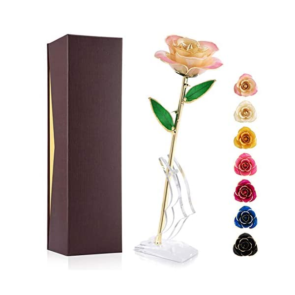24K Gold Rose, Forever Preserved Real Rose Gift for Lover Mom Wife Daughter Girl Friend, Unique Present on Valentines Day, Wedding Anniversary, Birthday, Proposal, Reward (Pink White with Stand)