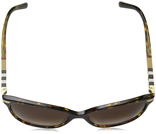 browngradient Lunettes Mixte Havana Montures De Burberry dark Marron 7O0xa