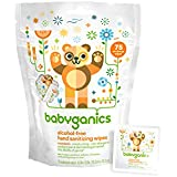 Babyganics Alcohol-Free Hand Sanitizing Wipes, Mandarin, 75 On-The-Go wipes, Packaging May Vary