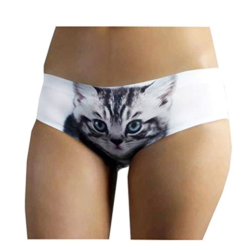 Blinlina Womens Traceless Briefs Seamless Sexy Pussycat Panties Knickers Hipster