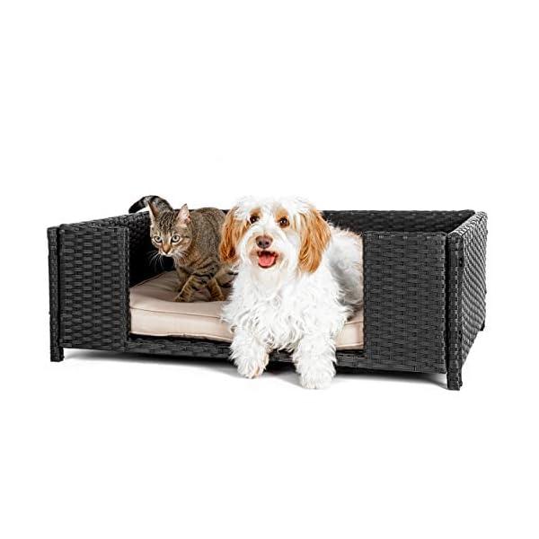 41Pzhp91J0L Cherioll weico Hundebett in Rattan-Optik 90 x 60 x 30 cm - gemütliches Hundebett mit waschbarem Kissen - stabiles…