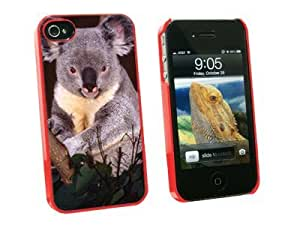 Graphics and More Koala Bear - Snap On Hard Protective Case for Apple iPhone 5 5s - Red - Carrying Case - Non-Retail Packaging - Red