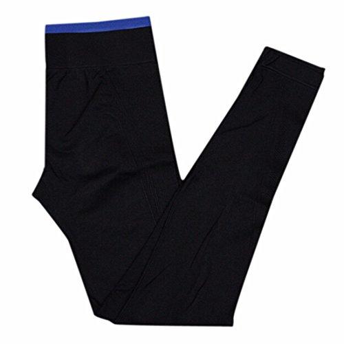 QIYUN.Z Mujeres Altas Polainas De La Cintura De Los Pantalones De La Yoga Del Deporte De Funcionamiento Gym Polainas Elasticas Negro Zafiro Azul Borde
