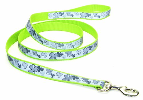 Lazer Brite Reflective Leash, 3/8