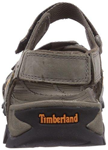 Gris Sandal Sandales FTP Ouvertes 0 Homme 2 Trailwind Eldridge Gris Timberland XnwUWvZqn