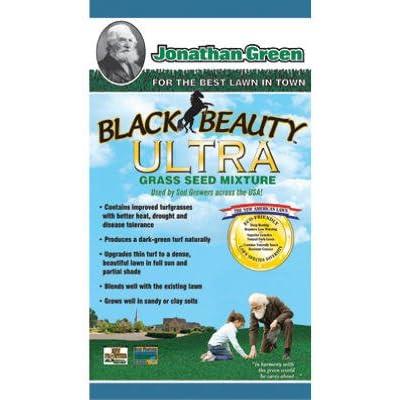 Jonathan Green Black Beauty Ultra Lawn Repair 7 Lb. : Grass Plants : Garden & Outdoor