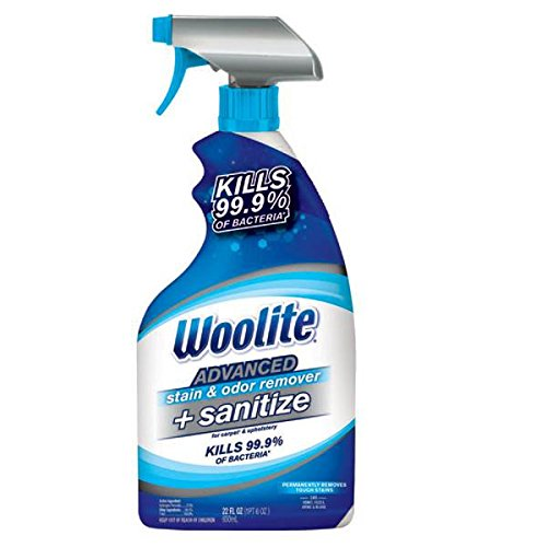 Woolite Advanced Stain & Odor Remover + Sanitize, 22floz (Pack of 3)