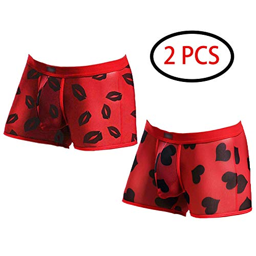 Men's Sexy Mesh Boxer Briefs Hot Lip Transparent Lingerie Red Heart Print Mesh Transparent Bulge Pouch Underpants(43Red2pcs,XL)