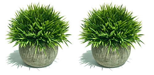 Maikai Products 2-pack Artificial Potted Green Grass. 5'' Tall x 5'' Wide Mini Size. Minimalist. Long lasting. Decorative fake grass plant in pots for home office indoor bathroom kitchen table -