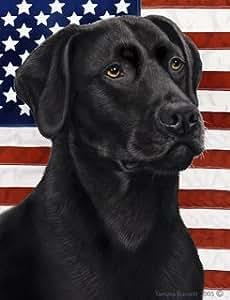 Amazon.com : Black Labrador Retriever by Tamara Burnett