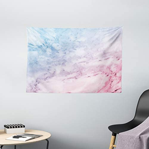 Ambesonne Marble Tapestry, Pastel Toned Cloudy Hazy Crack Lines Stained Antique Shabby Form Design, Wide Wall Hanging for Bedroom Living Room Dorm, 60 X 40 , Blue Pink