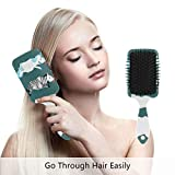 Hair Brush Natural Boar Bristle Hairbrush Air Cushion Plastic...