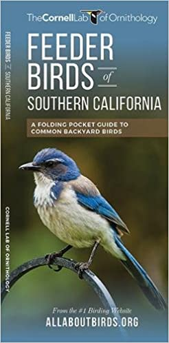 Feeder Birds Of Southern California: A Folding Pocket Guide To Common Backyard  Birds (All About Birds Pocket Guide Series): The Cornell Lab Of  Ornithology, ...